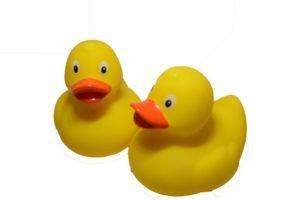 "3"" River Duck"
