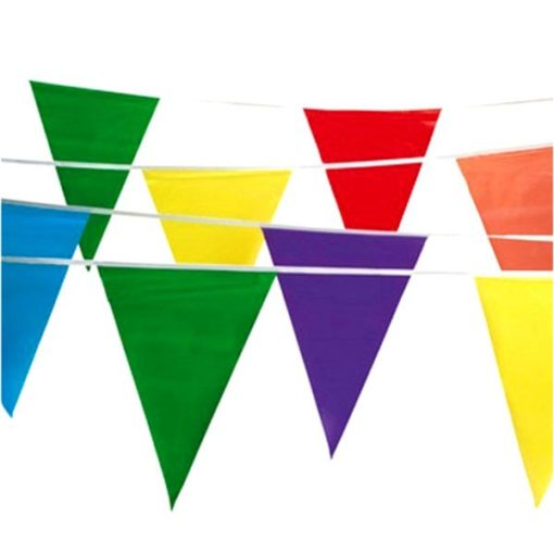 Multi Color Pennant